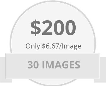 30 images for only $200